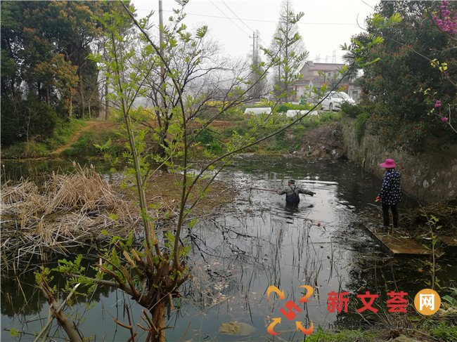 """新时代文明实践│南京江宁青林社区开展""""整"""