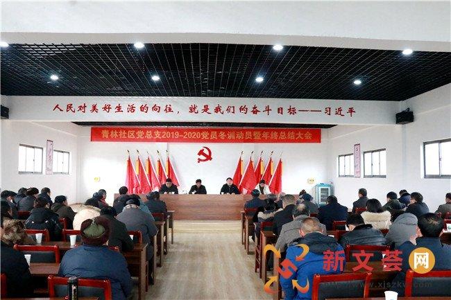 南京江寧青林社區開展黨員冬訓大會激發新時代組織活力