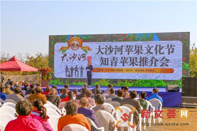 大沙河镇人民政府开展大沙河苹果文化节――知青苹果推介会