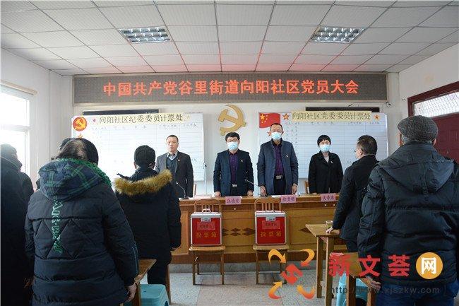 南京江宁谷里街道向阳社区召开换届选举党员大会